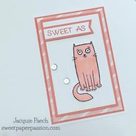 Sorbet Kitty Kat