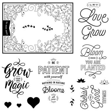 Bloom and Grow Jan18